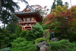 garden-of-japan-1506692